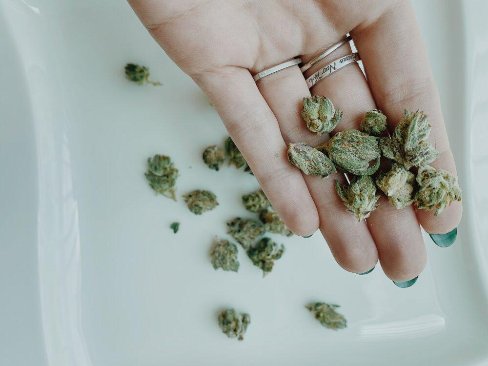 Ból głowy – terapia medyczną marihuaną