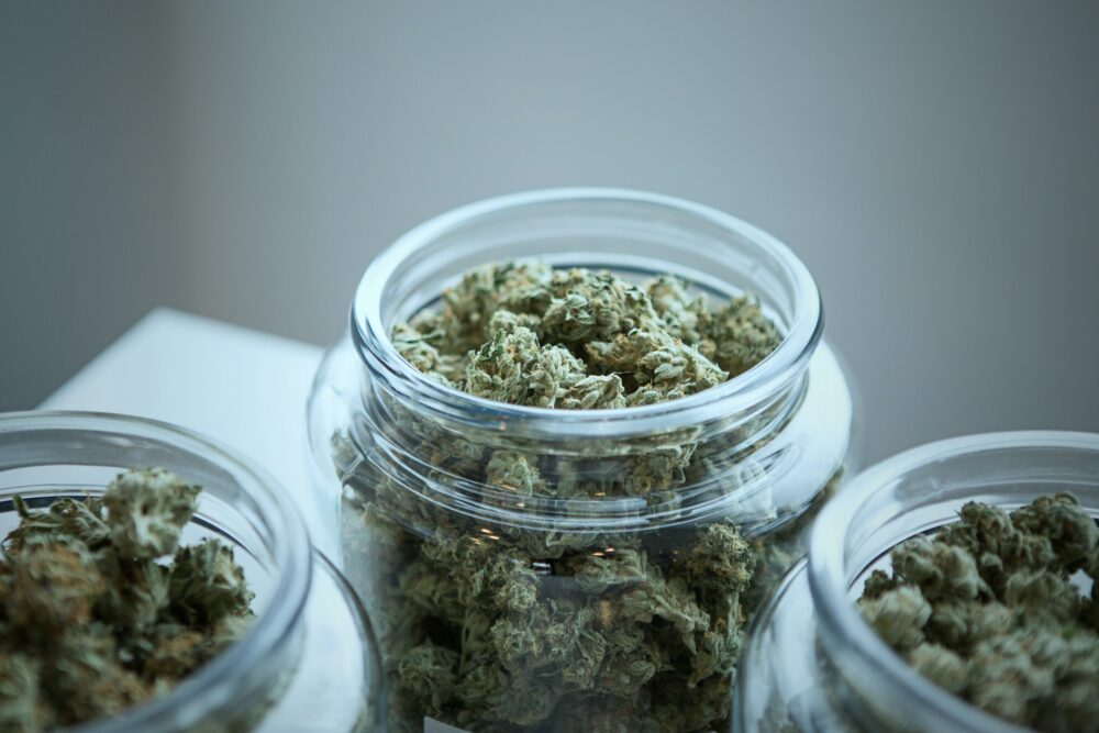 Wpływ marihuany na organizm. Plusy i minusy marihuany